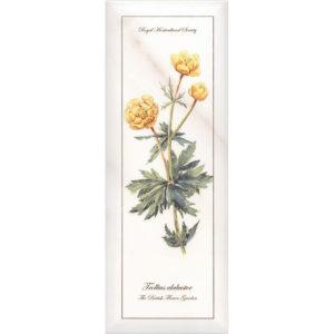 NT\A86\15005 | Декор Ноттингем Цветы грань