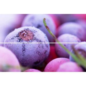 TD-BT-P-FB | Панно Beveled Tile Frozen berries (стекло)